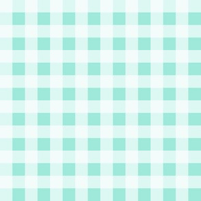mint gingham check plaid sweet girls summer gingham picnic