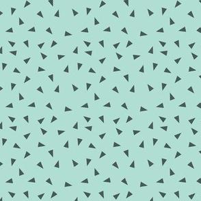 mint triangle coordinate