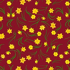 Daffodils on Burgundy