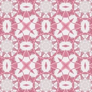Warm Pink and White Kaleidoscope Flowers