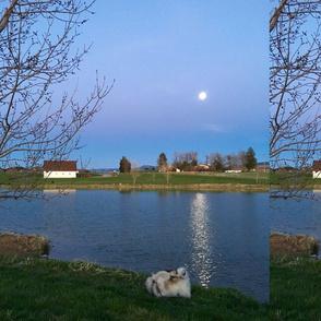 Spring_Montana_Moon