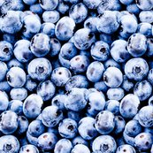 Rrrblueberries_small-01_shop_thumb