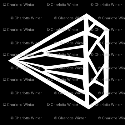 diamond black and white jewel gem railroad