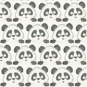 Panda Love Grey
