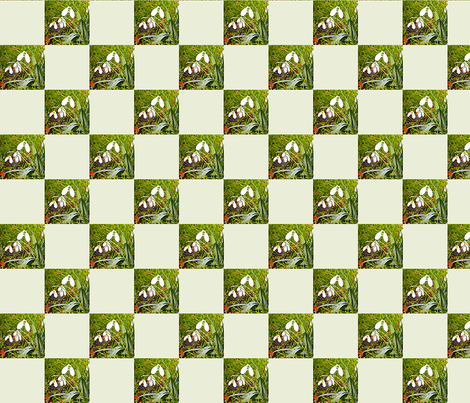 Snowdrops   2 inch checks fabric by koalalady on Spoonflower - custom fabric