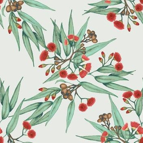 Eucalyptus Red Blossoms, Vintage Green