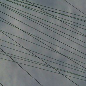 High Wire Act Laterally