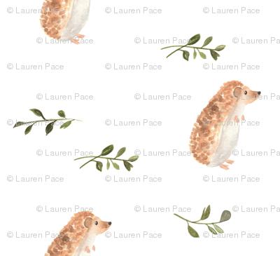 Curious Hedgehog | Watercolor