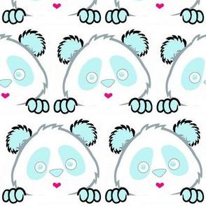 Panda Love Sky Blue
