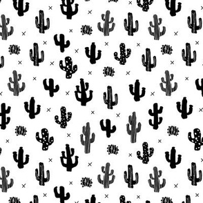 Raw western indian summer cactus garden black and white