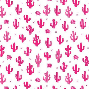 Raw western indian summer cactus garden black and white pink