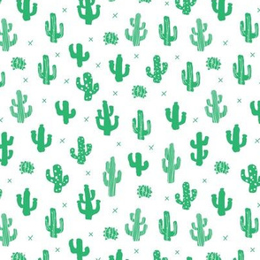 Raw western indian summer cactus garden green