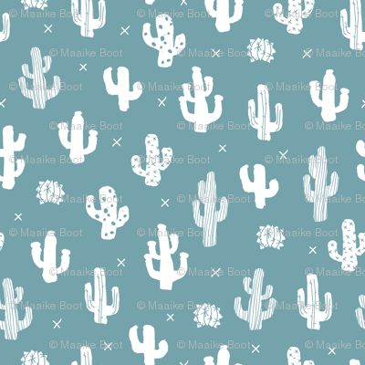 Raw western indian summer cactus garden blue