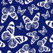 Blue Butterflies - Large
