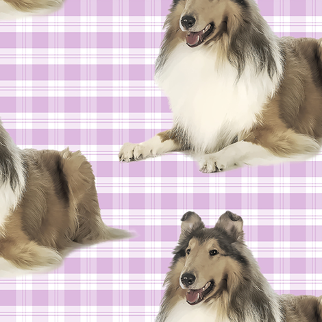 Collie on Pink Plaid fabric by pateisen on Spoonflower - custom fabric