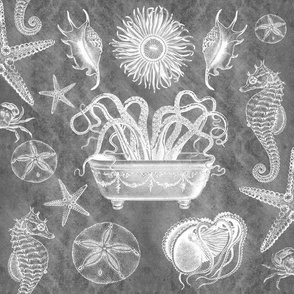 Sea Life Menagerie Gray