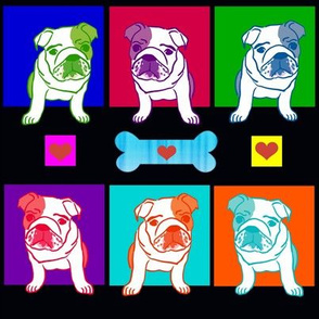Rainbow_Bulldogs