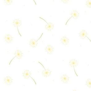Citrus_Dandelion
