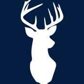 Buck on Navy