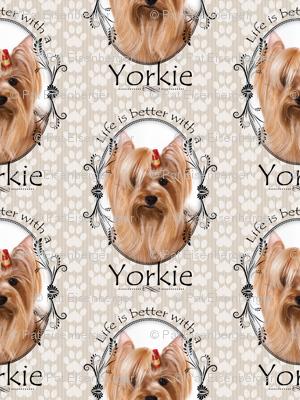 Better Life Yorkie 2