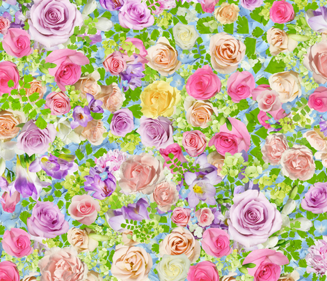 French Country Roses