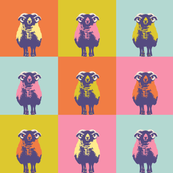 sheep-multi