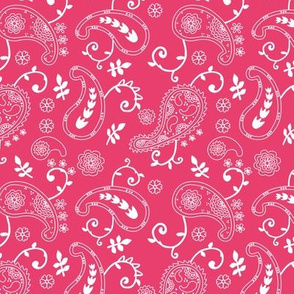 completely-paisley-coral
