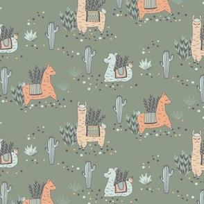 Lazy Little  Llamas