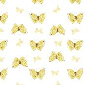 Rryellow_butterflies_shop_thumb