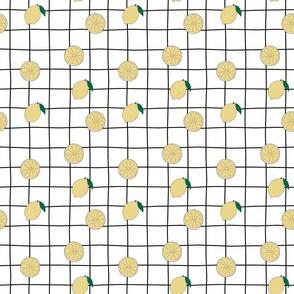 Lemon grid