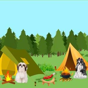 Shihtzu camping