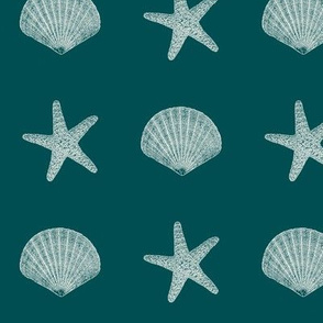 Seashells On Teal