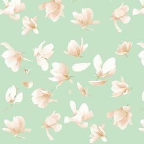 Tulip Magnolia (Mint)