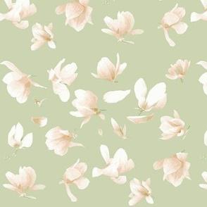 Tulip Magnolia (Sage)