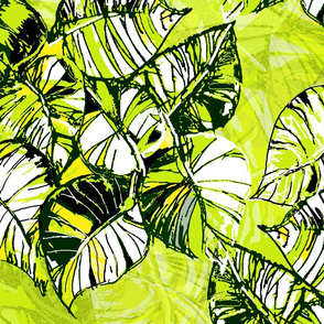 jungle_vine_lime