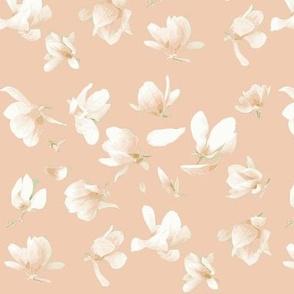 Tulip Magnolia (Apricot)