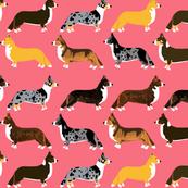 corgi corgis pet dog dogs cute dog best corgi fabric