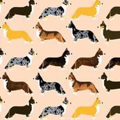 corgi corgis cute dog dogs corgi fabric cute best corgi dog pet dog fabrics