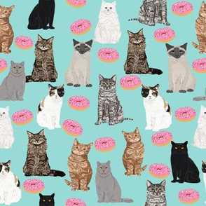 cats and donuts cat cute pet donuts donut food mint pink sweet cats