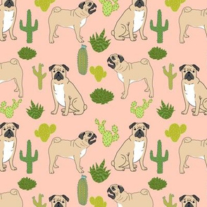 pugs pug cactus cacti cactuses tropical trend dogs pet dog pugs cute dogs