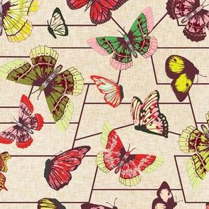 butterfly_chart_cherry