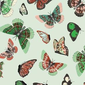 butterfly_study_mint