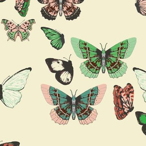 butterfly_swell