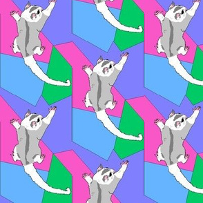 sugar glider shapes