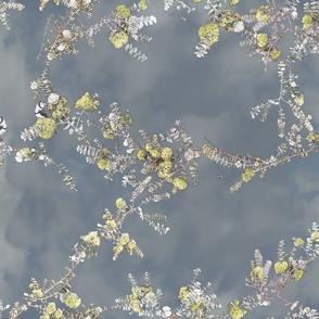 kruseanna on clouds