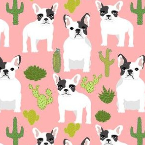 frenchies french bulldog cactus cacti cute funny dogs dog