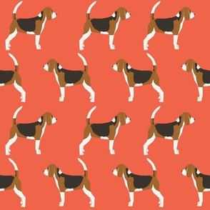 beagles beagle cute dog pet fabric pet dogs dog pets