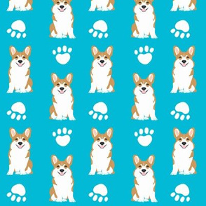 corgi corgis dog cute turquoise corgi dog paw print
