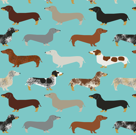 doxie dachshund dachshunds dogs dog pet dog doxie dog doxies cute puppy fabric by petfriendly on Spoonflower - custom fabric