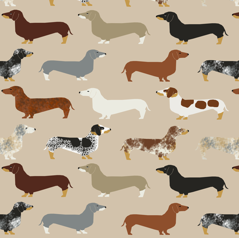 dachshund doxie dachshunds dogs dog pet dog cute dog pets fabric fabric by petfriendly on Spoonflower - custom fabric